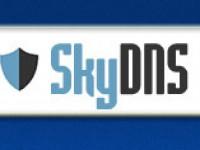 Сервис интернет-фильтрации SkyDNS создал DNS-центр в Украине