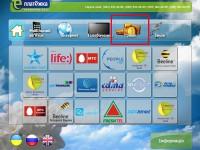 Заработал прямой приём платежей WebMoney через терминалы и банки Украины
