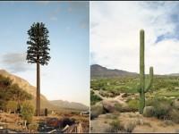 Как антенны сотовой связи маскируют под пальмы и секвойи