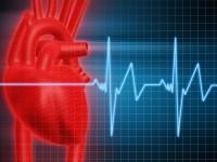 Биометрия сердца может предотвратить хакерские атаки