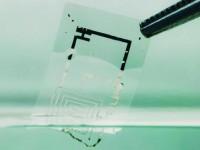 Электронные схемы, которые растворяются в воде