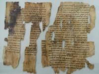 Знаменитые свитки Мёртвого моря выложили в Интернет-библиотеку