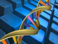 Программисты будут отслеживать вирусы, применяя принципы изучения ДНК