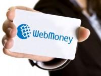 Украинские пользователи WebMoney могут бесплатно получить начальный аттестат