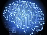 Канадские учёные напечатали модель человеческого мозга на 3D-принтере