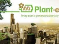 Учёные нашли способ получения электричества из живых растений