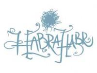 """Создатели """"Хабрахабра"""" запустили соцсеть для IT-профессионалов"""