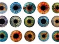 Американские полисмены вооружаются портативным сканером глаз