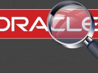 Глава Oracle сообщил, что полностью поддерживает Интернет-слежку