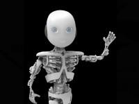 Создан робот с анатомией, как у человека