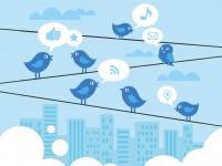 Новая программа будет следить за настроениями граждан в Twitter