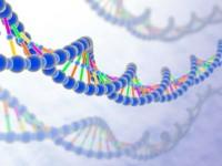 Американцы учатся программировать молекулы ДНК