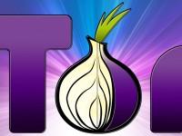 Новый поисковик TorSearch работает с сайтами анонимной сети Tor
