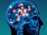 Создан процессор, работающий по принципу человеческого мозга