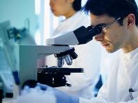 В основу имплантов будущего может лечь гидрогель