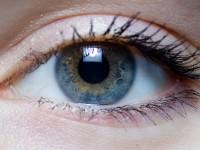 Английские учёные распечатали клетки сетчатки глаза на 3D-принтере