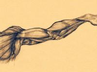 Учёные создали мышцы, которые делают человека силачом