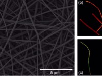 """Итальянские учёные создали лазерные нановолокна для """"умной ткани"""""""