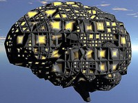 Учёные распечатали модель головного мозга для подготовки хирургов