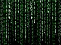 Среди посетителей сайтов более 60 %  – программные боты