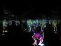"""В Сингапуре можно """"потанцевать"""" с голограммами в специальном лабиринте"""