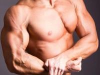 Японцы создали искусственные мускулы, которые подчиняются нервной системе