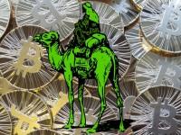 Правительство США конфисковало Bitcoin-запас сайта Silk Road