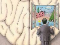 Образование памяти в мозгу впервые засняли на видео