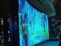 Samsung представила первый в мире гибкий телевизор