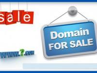 Топ-10 самых дорогих доменных сделок 2013 года