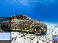 Подводный мир можно будет изучать через Google Street View