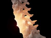 На 3D-принтере напечатали полимер, лёгкий и прочный, как кости человека