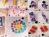 """Миниатюрные нанороботы """"собирают"""" из деталей электронику и живые ткани"""