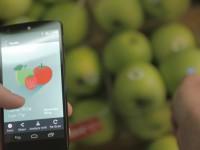 Инфракрасный сканер для смартфона определяет состав любых предметов