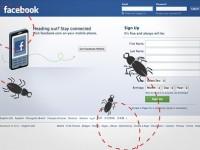 Facebook выплатила $1,5 млн за обнаруженные уязвимости