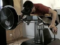 На основе шлема Oculus Rift разработан симулятор птицы