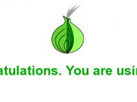 Около 10 тысяч украинцев ежедневно используют анонимную сеть Tor