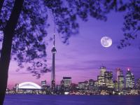 Канада как место для стартапа: за и против
