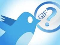 В сети Twitter теперь можно делиться и GIF-анимацией