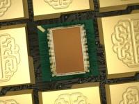 IBM создала чип, действующий по принципу человеческого мозга