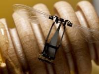 Прототип робота-пчелы умеет переносить пыльцу, но не собирает мёд