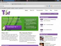 В Интернете обнаружен «злой двойник» анонимной сети Tor