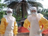 Эбола вдвойне страшней, если много соцсетей: Как работает нагнетание паники