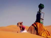 Верблюд сделал для Google Street View виртуальный тур по пустыне Лива