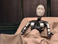 Робот сыграет главную роль в спектакле по произведению Кафки