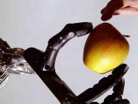 Новый искусственный интеллект может поступить в японский колледж