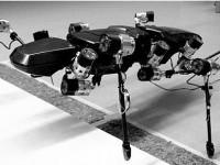 Робот-насекомое будет исследовать планеты Солнечной системы