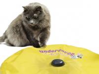 В США начались продажи электронной дразнилки для кошек