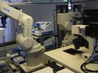 Робот-учёный, возможно, нашёл лекарство от малярии