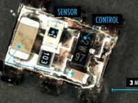 Микророботы — следующий виток в технологии роботостроения